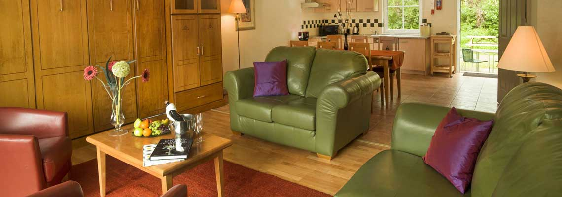 Kenmare Self Catering Accommodation - Forelands Houses Living Area